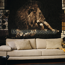 King fotowand leeuw