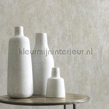 behang modern Concrete Patina 9241
