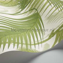 behang romatisch Palm Jungle