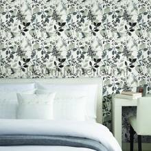 behang zwart-wit Gossamer