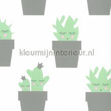 kinderkamer kinderbehang jongens behang Kactus grijs mint