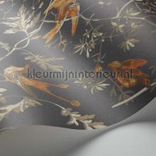 behang romatisch Hummingbirds