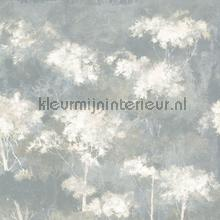 Selva gris