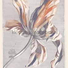 Tulip tyler marine