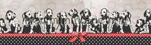 behangranden meisjeskamer 1001 dalmatiers