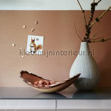 interieursticker Magnetische interieurfolie licht brons