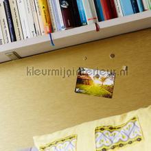 interieursticker Magnetische interieurfolie goud