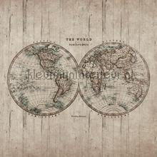 Antieke wereldkaart fotowand