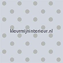 pip dots grey