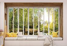Green forest seen though window