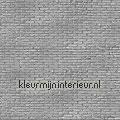 phm-34 brick silver