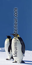 pinguins links