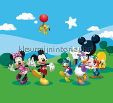 gordijnstoffen meisjeskamer Mickey and friends