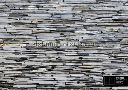 Lei stenen wand FTS 1313  fotobehang AG Design van AG Design ...