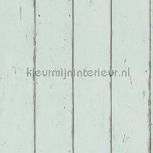 Hout in mintkleur papel de parede Rasch madeira
