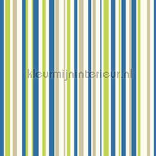 Earn your stripes - blue and green papel de parede Arthouse Beb�s Crian�as