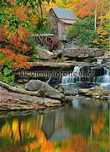 Grist Mill fotobehang Ideal Decor Bossen