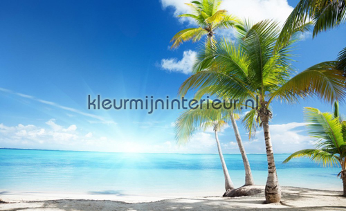 Behang Kinderkamer Strand : ... on the beach fotobehang 735-VE M Zon ...
