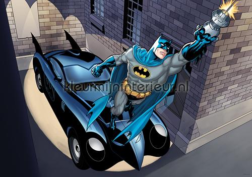 Power Batman fotobehang 2108-VE M kinderkamer jongens ...