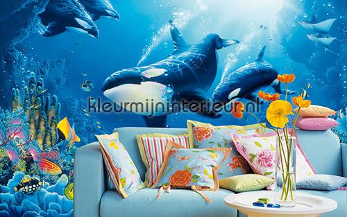 delight of life fotobehang 00118 kinderkamer jongens Ideal Decor