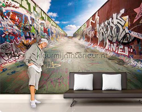 Graffiti Halfpipe fotobehang 145 kinderkamer jongens Mantiburi