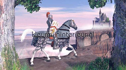 Kinderkamer Ridder : Ridder te paard fotobehang kinderkamer jongens ...
